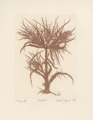Ernst Degasperi, Distelfächer, Tiefdruck