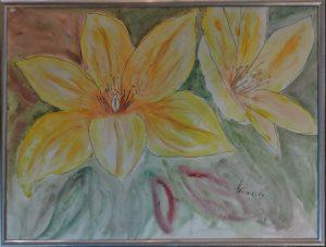 N.N., Gelbe Blüten, Stift und Aquarell