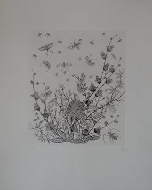 Fauna und Flora, M. Lehner, Radierung Probedruck signiert