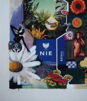 Stephan Pfeffer, Full bloom, C-Print und Acryl auf Textil